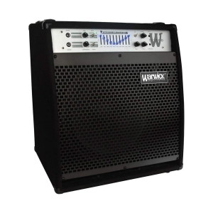 A picture of our Warwick 15 Bass Combo- 300W