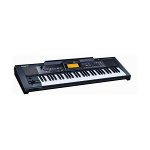 A picture of our Roland E-09IN Indian Keyboard