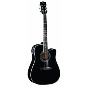 FINA Acoustic Guitar FD802CEQ - Marshall Music
