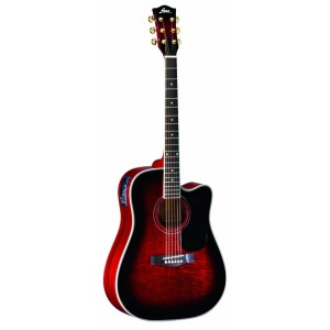 FINA Acoustic Guitar FD808CEQTWRS  - Marshall Music