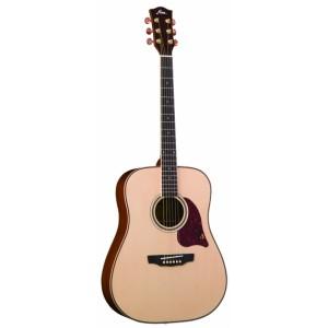 Fina Acoustic Guitar FD810