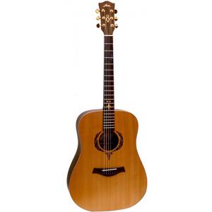 Fina FD8352CE Acoustic Guitar 1