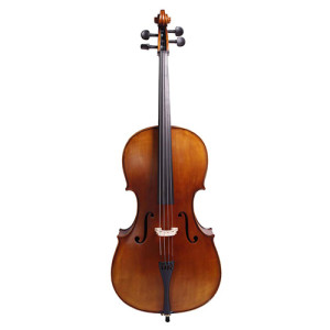 Sandner Cello 1