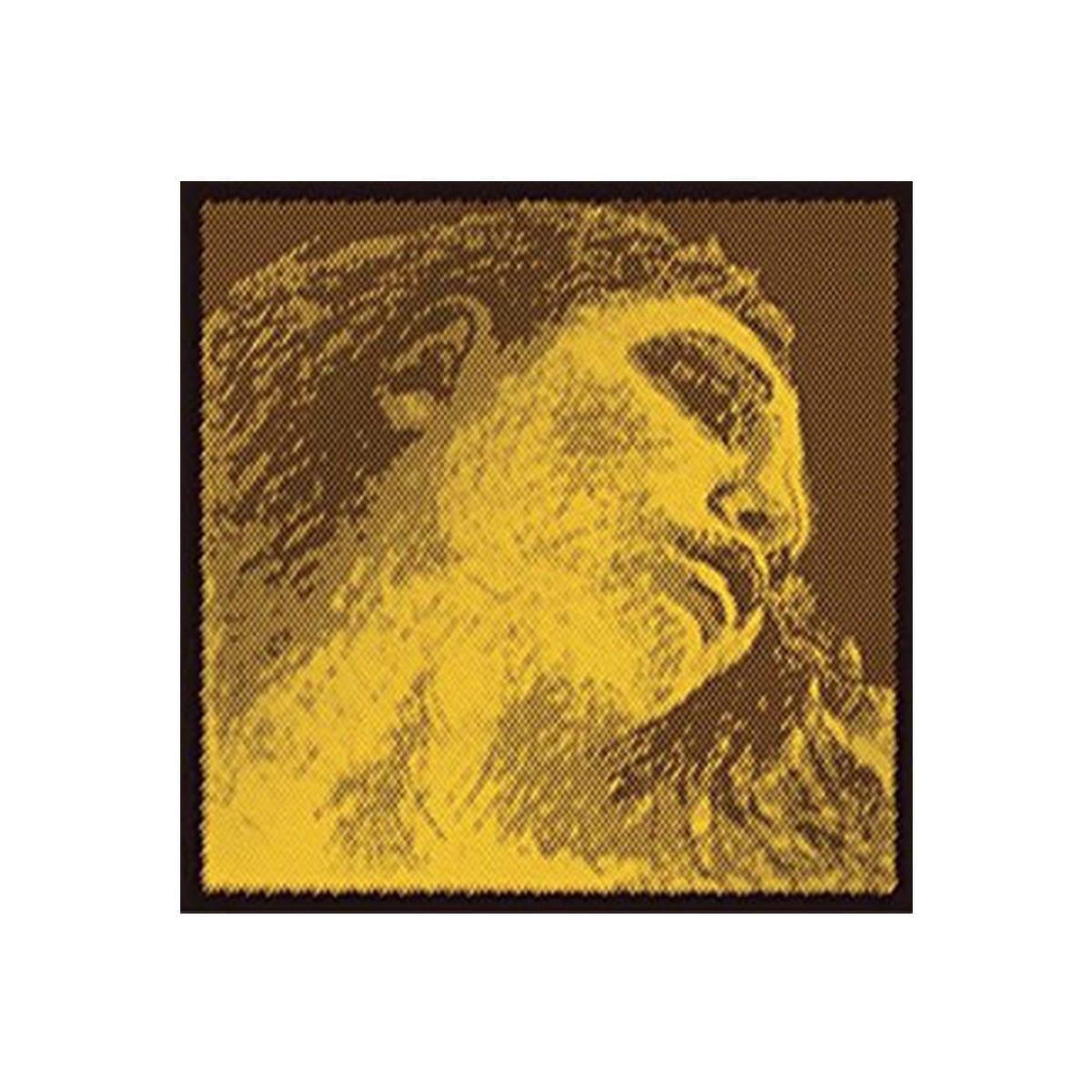 Pirastro Evah Pirazzi Gold Violin Sting Set